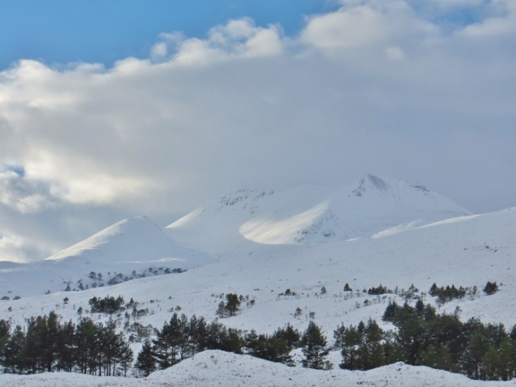 With 20cm forecast in next 24hrs, we wished we'd brought our skis!