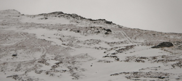 Very obvious Agro tracks at 700m on Druim Reidh - acceptable? No!